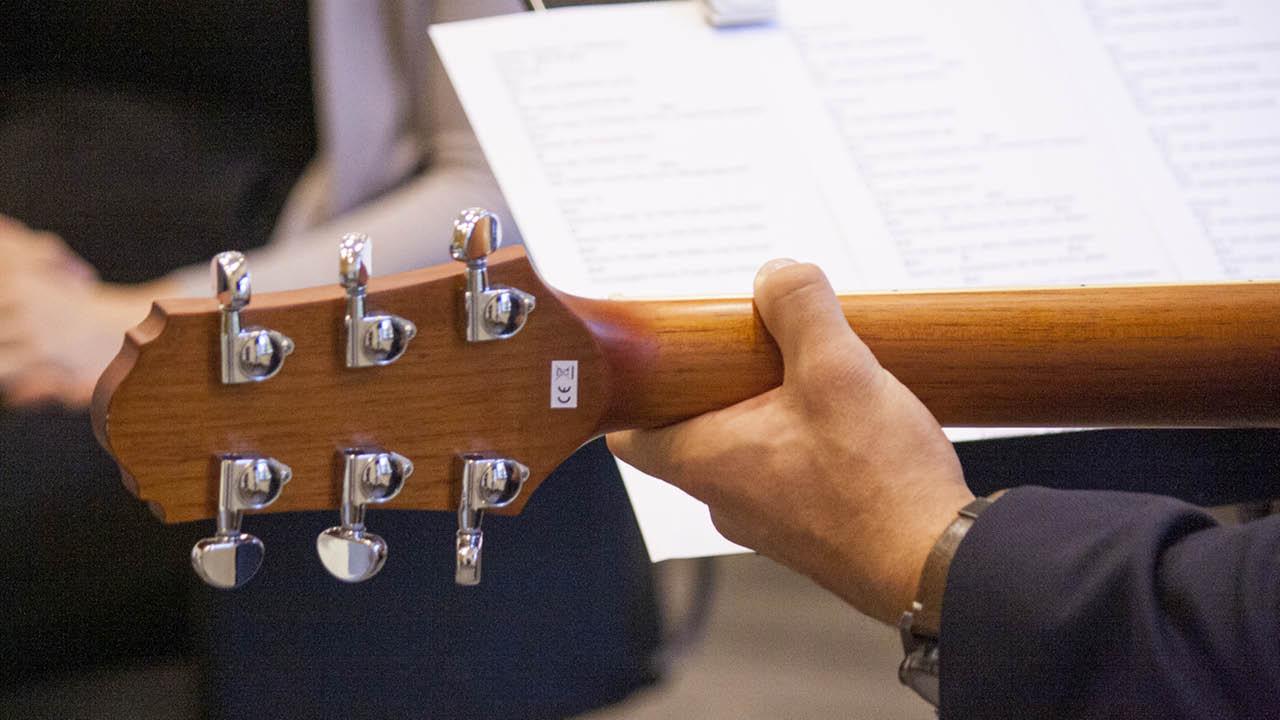 Gitarre von hinten